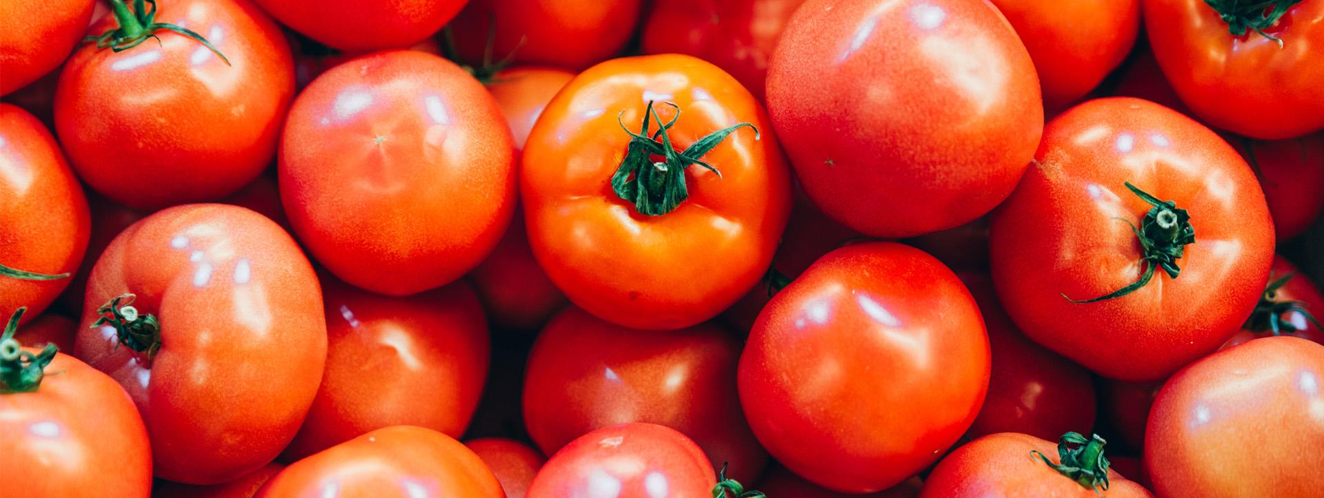 El tomate fruta o verdura